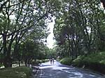 Park5_2